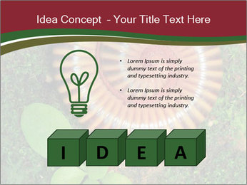 0000081390 PowerPoint Templates - Slide 80