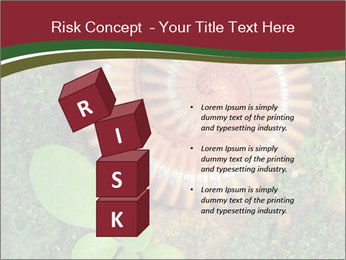 0000081390 PowerPoint Templates - Slide 81