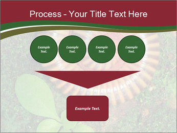 0000081390 PowerPoint Templates - Slide 93