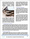 0000081394 Word Templates - Page 4