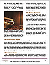 0000081402 Word Template - Page 4
