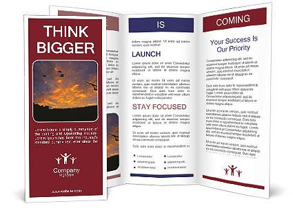 0000081403 Brochure Template