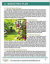 0000081406 Word Templates - Page 8