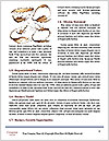 0000081408 Word Templates - Page 4