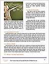 0000081412 Word Template - Page 4