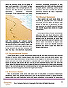 0000081419 Word Template - Page 4