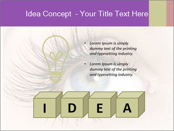 0000081422 PowerPoint Template - Slide 80
