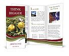 0000081427 Brochure Template