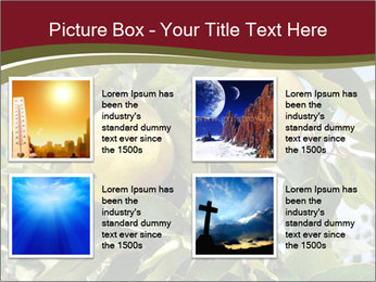 0000081427 PowerPoint Templates - Slide 14