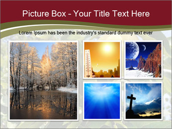 0000081427 PowerPoint Templates - Slide 19