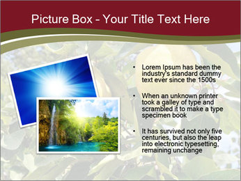 0000081427 PowerPoint Templates - Slide 20
