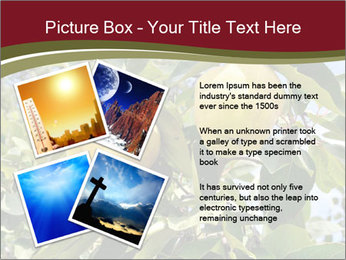 0000081427 PowerPoint Templates - Slide 23