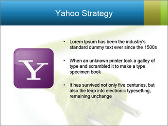0000081430 PowerPoint Templates - Slide 11