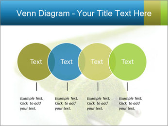 0000081430 PowerPoint Templates - Slide 32