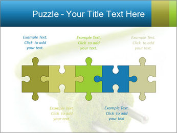 0000081430 PowerPoint Templates - Slide 41