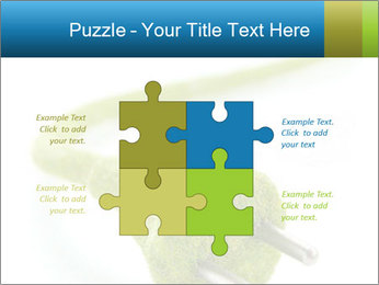0000081430 PowerPoint Templates - Slide 43