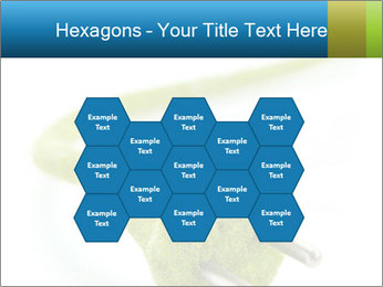 0000081430 PowerPoint Templates - Slide 44