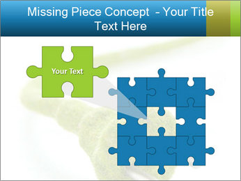 0000081430 PowerPoint Templates - Slide 45