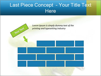0000081430 PowerPoint Templates - Slide 46