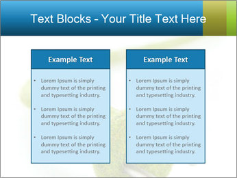 0000081430 PowerPoint Templates - Slide 57