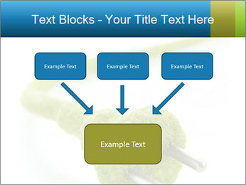 0000081430 PowerPoint Templates - Slide 70