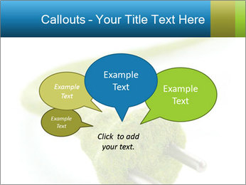 0000081430 PowerPoint Templates - Slide 73