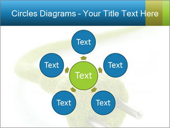 0000081430 PowerPoint Templates - Slide 78