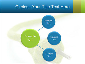 0000081430 PowerPoint Templates - Slide 79