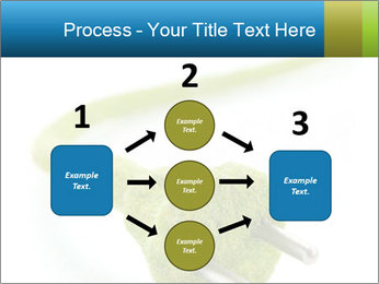 0000081430 PowerPoint Templates - Slide 92