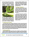 0000081430 Word Template - Page 4