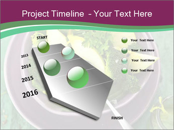 0000081435 PowerPoint Template - Slide 26