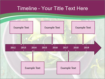 0000081435 PowerPoint Template - Slide 28