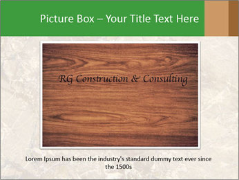 0000081439 PowerPoint Template - Slide 16