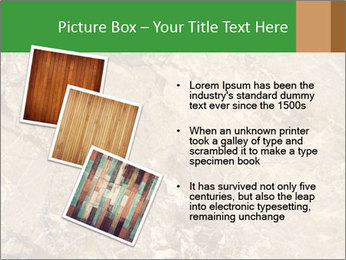 0000081439 PowerPoint Template - Slide 17