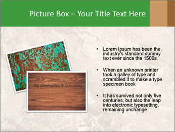 0000081439 PowerPoint Template - Slide 20