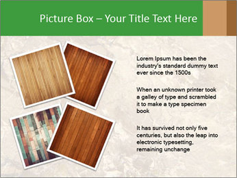 0000081439 PowerPoint Template - Slide 23