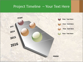 0000081439 PowerPoint Template - Slide 26