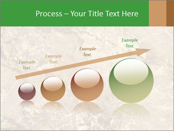 0000081439 PowerPoint Template - Slide 87