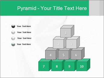 0000081443 PowerPoint Template - Slide 31