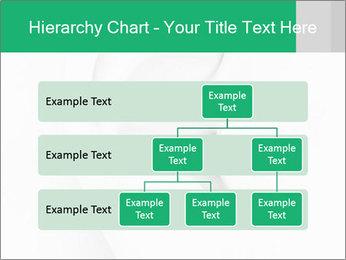 0000081443 PowerPoint Template - Slide 67