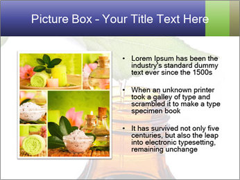 0000081445 PowerPoint Template - Slide 13