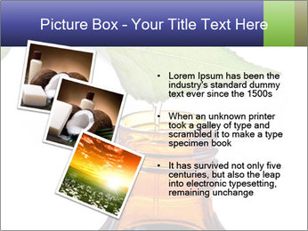 0000081445 PowerPoint Template - Slide 17
