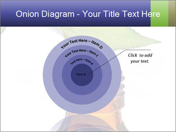 0000081445 PowerPoint Template - Slide 61