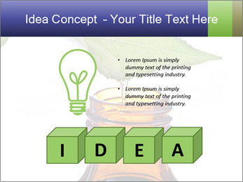 0000081445 PowerPoint Template - Slide 80