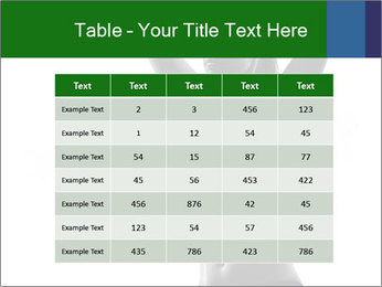 0000081447 PowerPoint Template - Slide 55