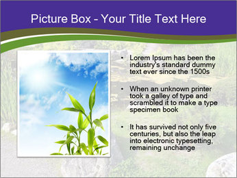 0000081451 PowerPoint Templates - Slide 13