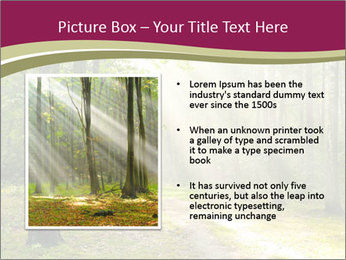 0000081452 PowerPoint Template - Slide 13