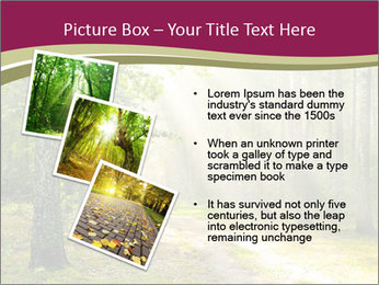 0000081452 PowerPoint Template - Slide 17