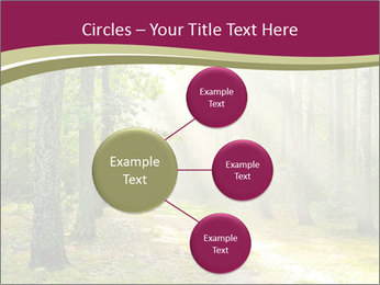 0000081452 PowerPoint Templates - Slide 79