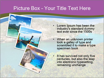 0000081453 PowerPoint Templates - Slide 17